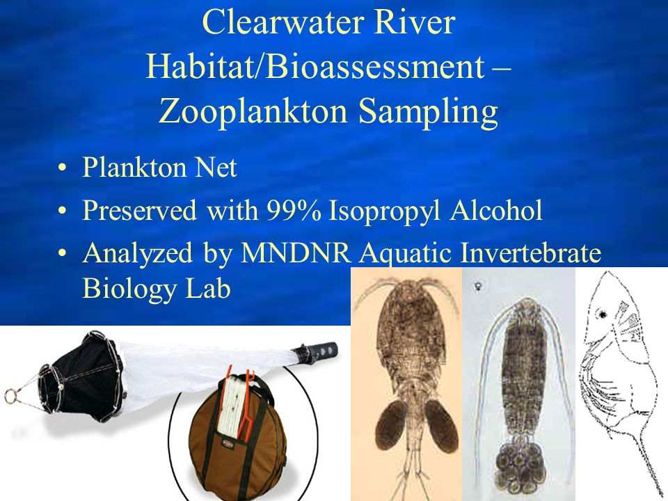Clearwater River Habitat/Bioassessment – Zooplankton Sampling Plankton Net Preserved with 99% Isopropyl Alcohol Analyzed by MNDNR Aquatic Invertebrate