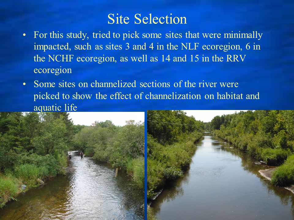 Site Selection For this study, tried to pick some sites that were minimally impacted, such as sites 3 and 4 in the NLF ecoregion, 6 in the NCHF ecoregion, as well as 14 and 15 in the RRV ecoregion Some sites on channelized sections of the river were picked to show the effect of channelization on habitat and aquatic life