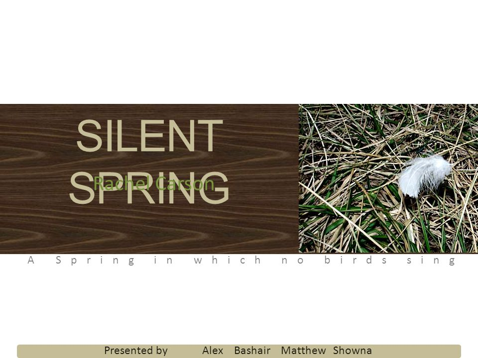 SILENT SPRING Rachel Carson A Spring in which no birds sing Presented by Alex Bashair Matthew Showna