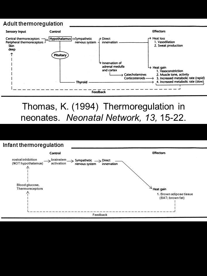 Thomas, K. (1994) Thermoregulation in neonates. Neonatal Network, 13, 15-22.