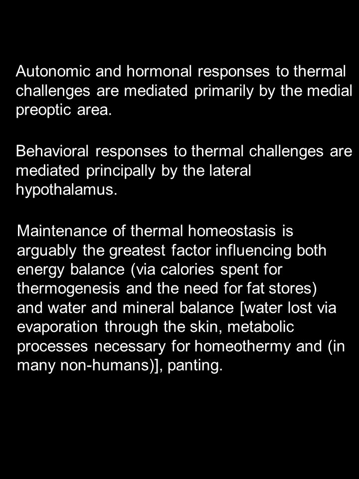 Autonomic and hormonal responses to thermal challenges are mediated primarily by the medial preoptic area.