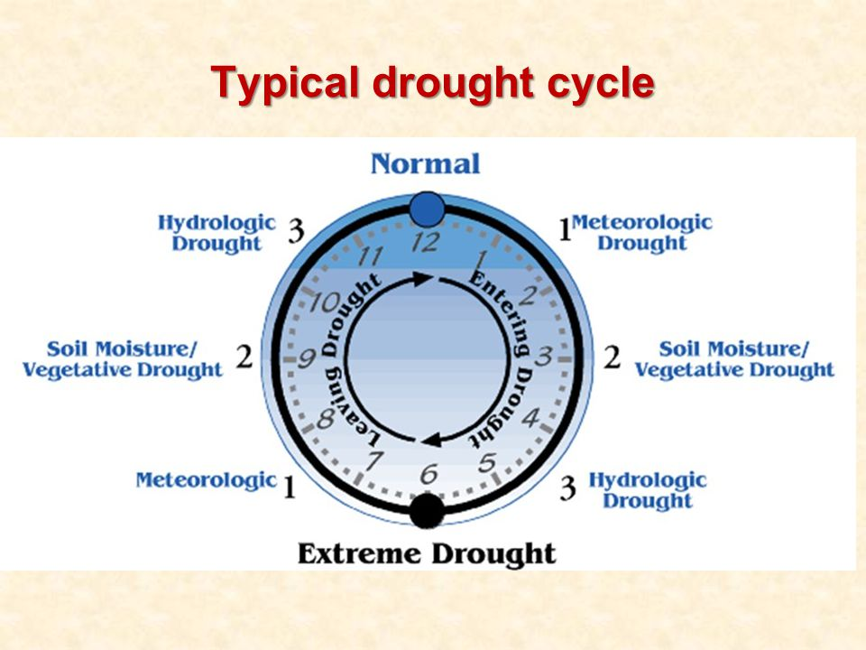 Typical drought cycle