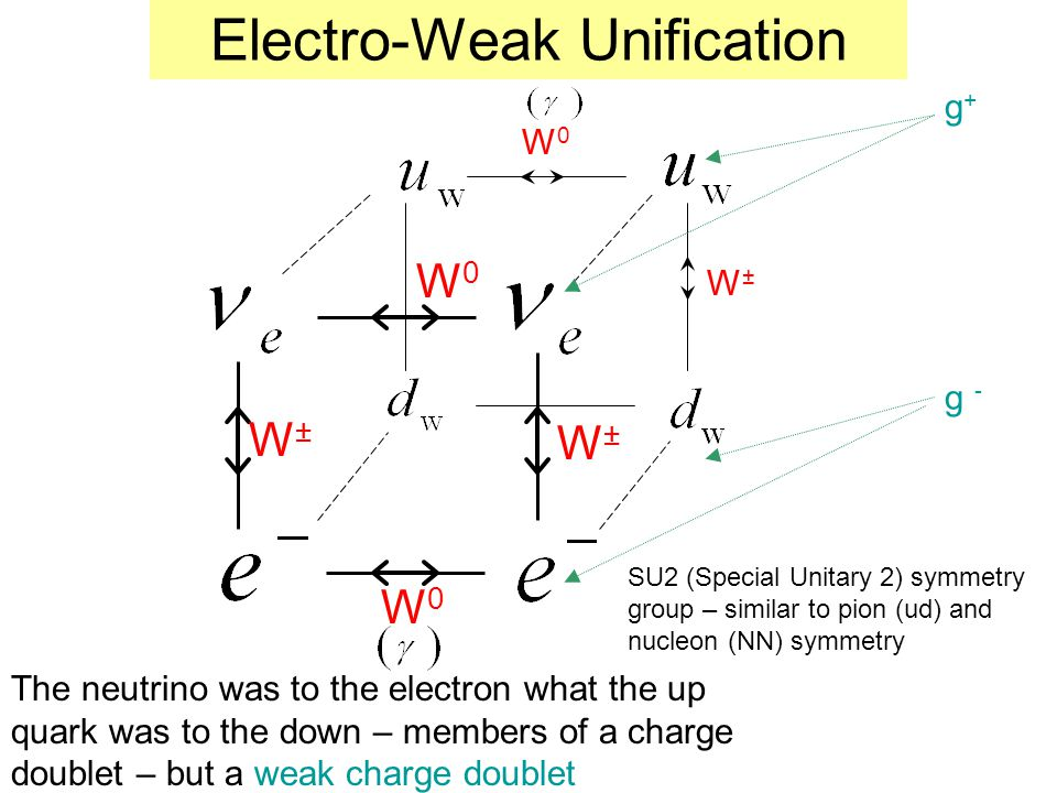 Electro-Weak Unification W±W± W±W± W0W0 W0W0 W0W0 W±W± g+g+ g - The neutrino was to the electron what the up quark was to the down – members of a char