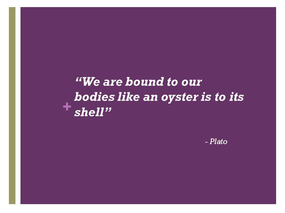 """+ """"We are bound to our bodies like an oyster is to its shell"""" - Plato"""