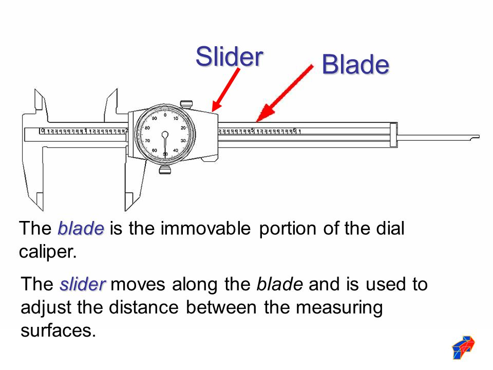 Blade blade The blade is the immovable portion of the dial caliper. slider The slider moves along the blade and is used to adjust the distance between