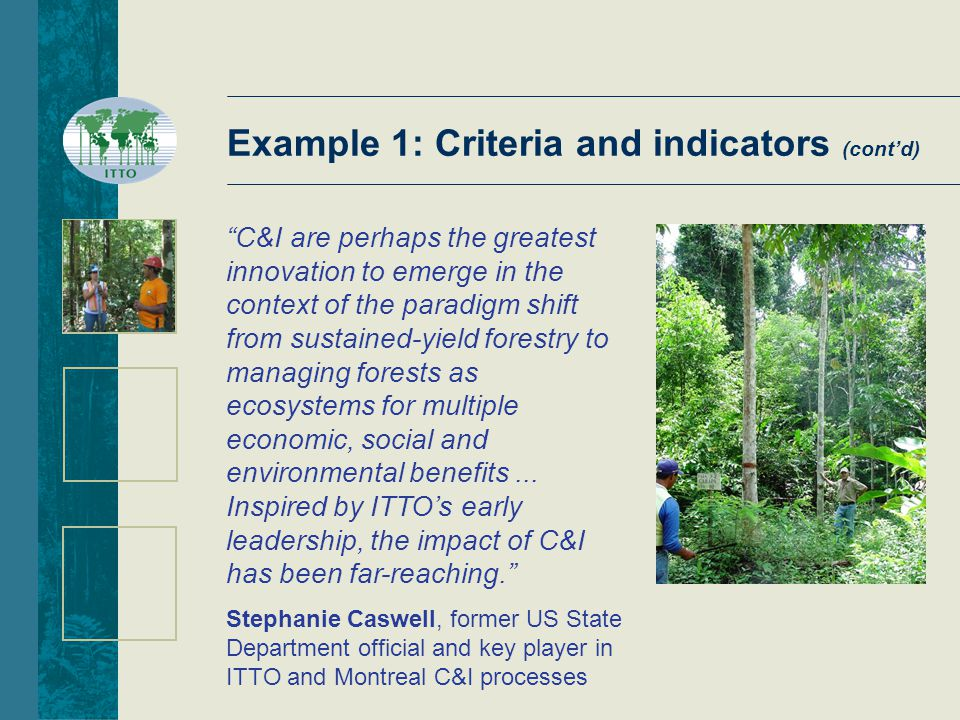Example 1: Criteria and indicators (cont'd) C&I are perhaps the greatest innovation to emerge in the context of the paradigm shift from sustained-yield forestry to managing forests as ecosystems for multiple economic, social and environmental benefits...