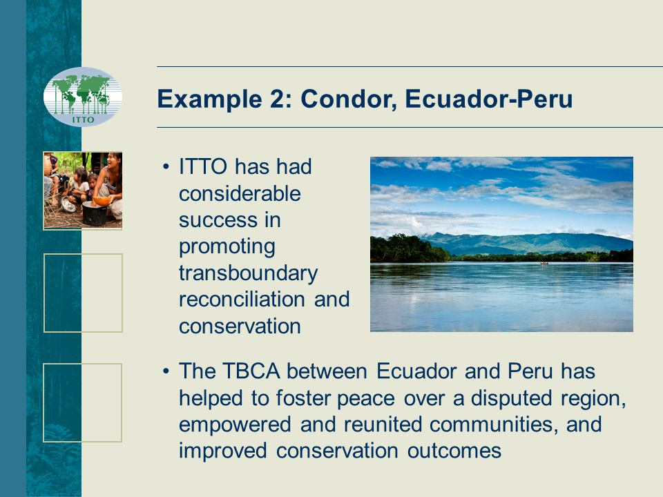 Example 2: Condor, Ecuador-Peru The TBCA between Ecuador and Peru has helped to foster peace over a disputed region, empowered and reunited communities, and improved conservation outcomes ITTO has had considerable success in promoting transboundary reconciliation and conservation