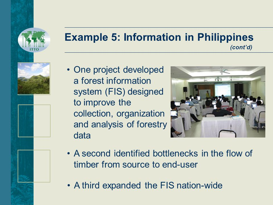 A third expanded the FIS nation-wide A second identified bottlenecks in the flow of timber from source to end-user One project developed a forest information system (FIS) designed to improve the collection, organization and analysis of forestry data Example 5: Information in Philippines (cont'd)
