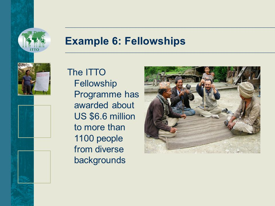 Example 6: Fellowships The ITTO Fellowship Programme has awarded about US $6.6 million to more than 1100 people from diverse backgrounds