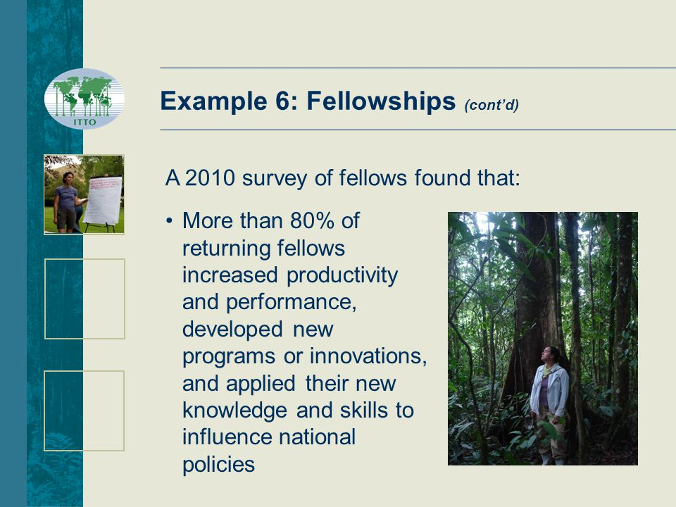 Example 6: Fellowships (cont'd) A 2010 survey of fellows found that: More than 80% of returning fellows increased productivity and performance, developed new programs or innovations, and applied their new knowledge and skills to influence national policies