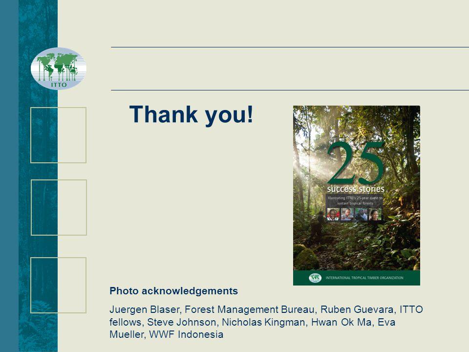 Photo acknowledgements Juergen Blaser, Forest Management Bureau, Ruben Guevara, ITTO fellows, Steve Johnson, Nicholas Kingman, Hwan Ok Ma, Eva Mueller, WWF Indonesia Thank you!