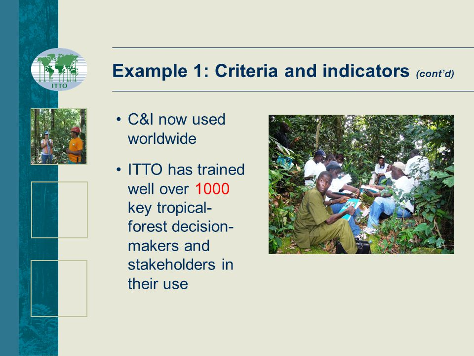 ITTO has trained well over 1000 key tropical- forest decision- makers and stakeholders in their use C&I now used worldwide Example 1: Criteria and indicators (cont'd)