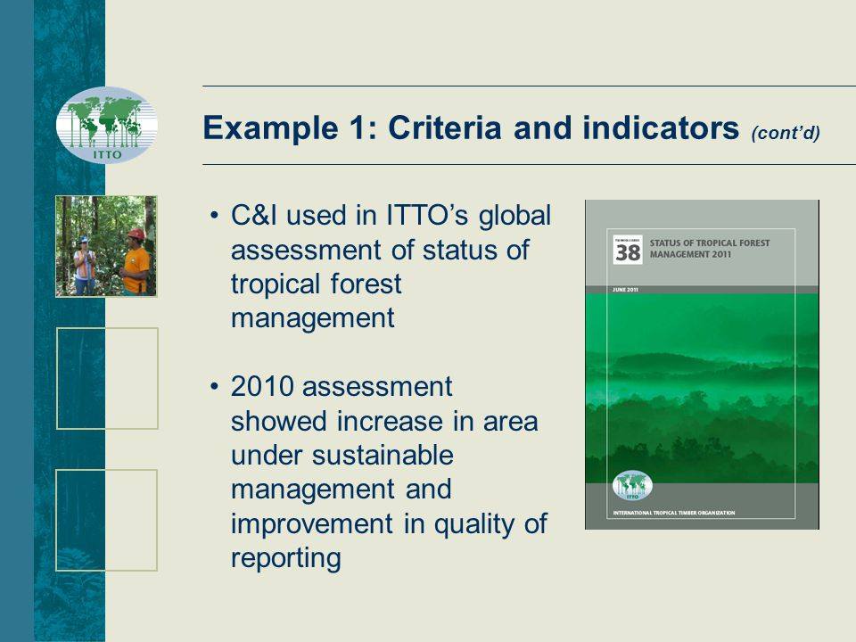 2010 assessment showed increase in area under sustainable management and improvement in quality of reporting C&I used in ITTO's global assessment of status of tropical forest management