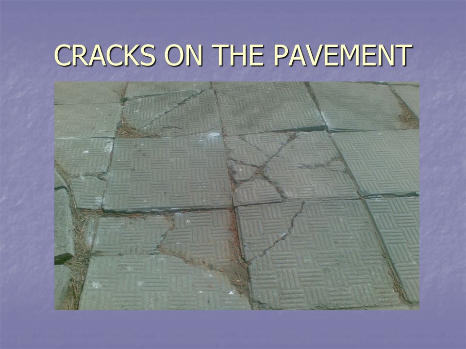 CRACKS ON THE PAVEMENT