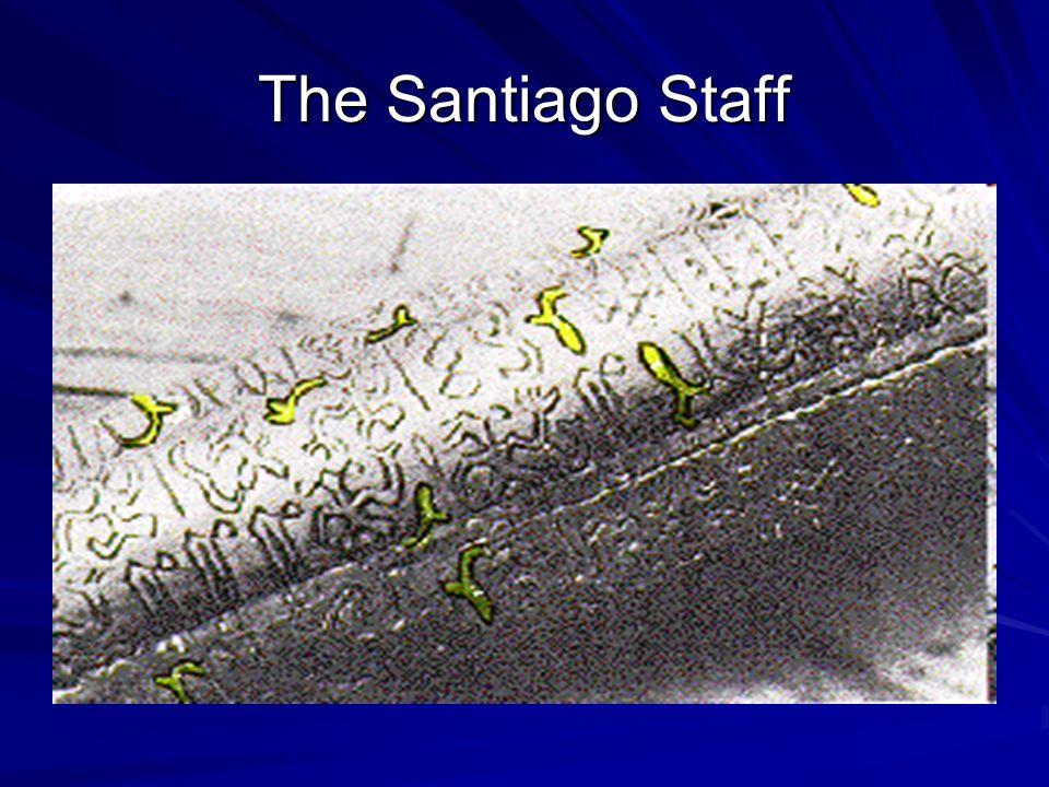 The Santiago Staff