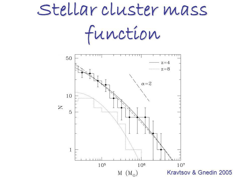 Stellar cluster mass function Kravtsov & Gnedin 2005 Kravtsov & Gnedin 2005