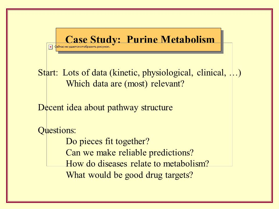 Case Study: Purine Metabolism Start: Lots of data (kinetic, physiological, clinical, …) Which data are (most) relevant.