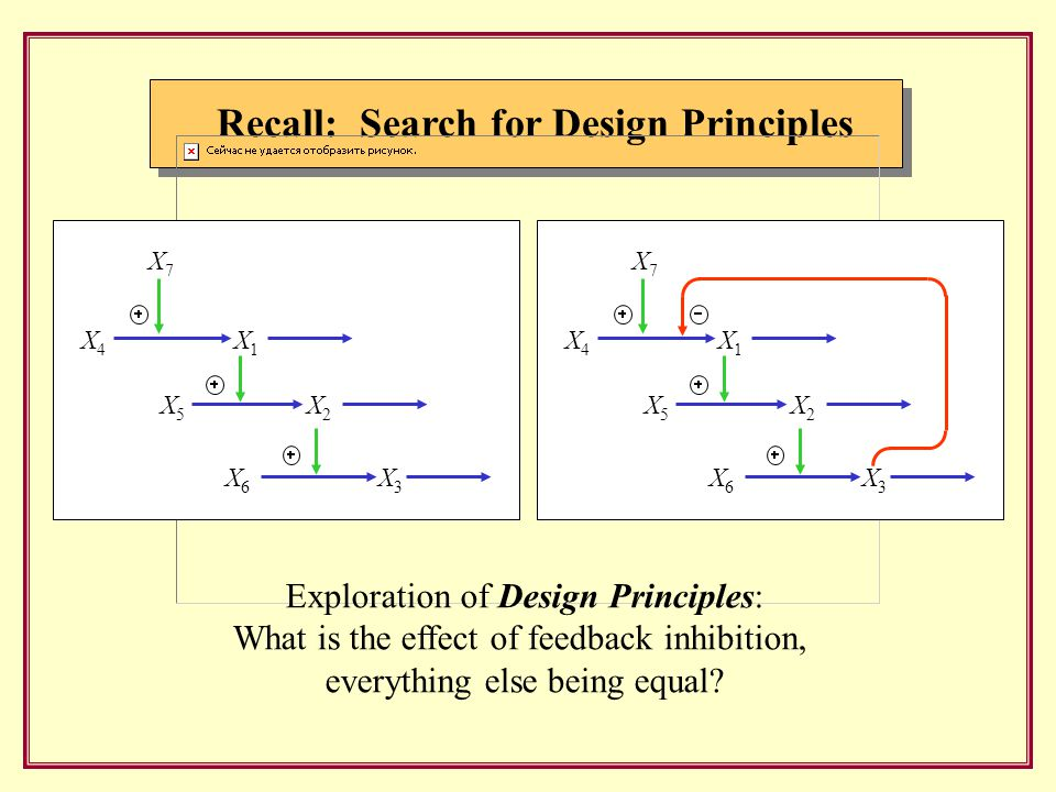 Recall: Search for Design Principles X 4 X 7 X 1 X 5 X 2 X 6 X 3 X 4 X 7 X 1 X 5 X 2 X 6 X 3 Exploration of Design Principles: What is the effect of feedback inhibition, everything else being equal