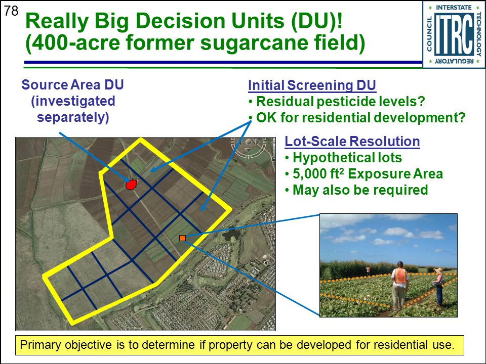 78 Really Big Decision Units (DU)! (400-acre former sugarcane field) Source Area DU (investigated separately) Initial Screening DU Residual pesticide