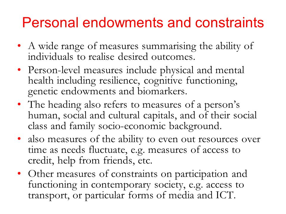 Personal endowments and constraints A wide range of measures summarising the ability of individuals to realise desired outcomes.