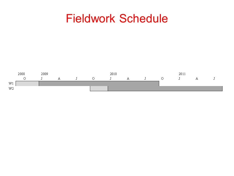 Fieldwork Schedule