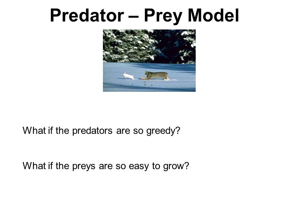 Predator – Prey Model What if the predators are so greedy What if the preys are so easy to grow