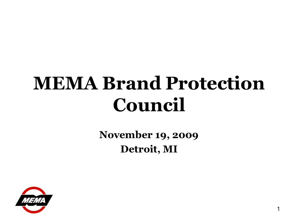 1 MEMA Brand Protection Council November 19, 2009 Detroit, MI
