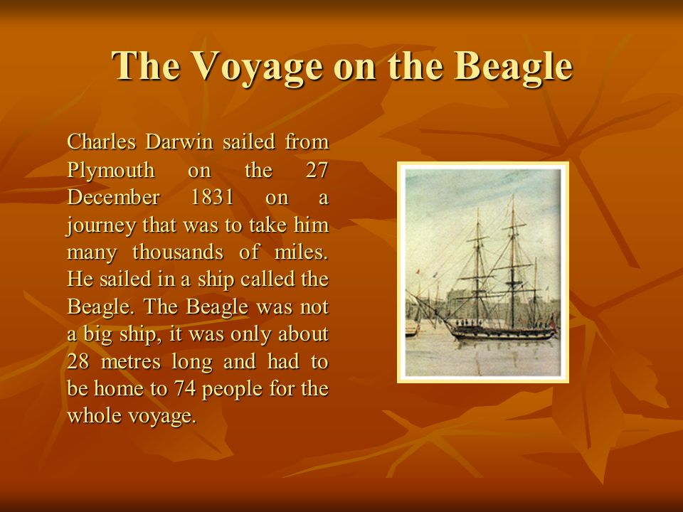 The Voyage on the Beagle Charles Darwin sailed from Plymouth on the 27 December 1831 on a journey that was to take him many thousands of miles.