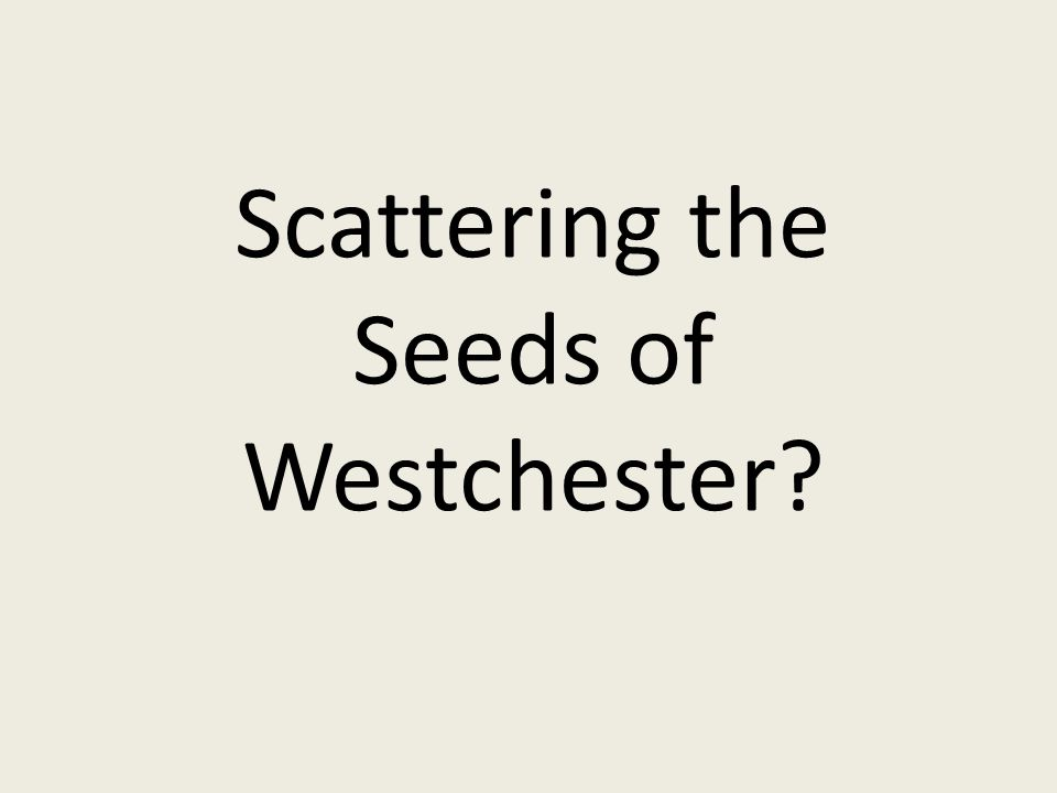 Scattering the Seeds of Westchester?