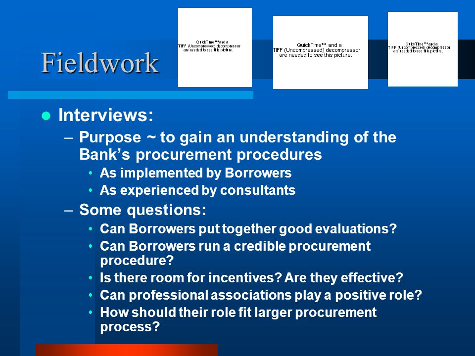 Fieldwork Interviews: –Purpose ~ to gain an understanding of the Bank's procurement procedures As implemented by Borrowers As experienced by consultants –Some questions: Can Borrowers put together good evaluations.