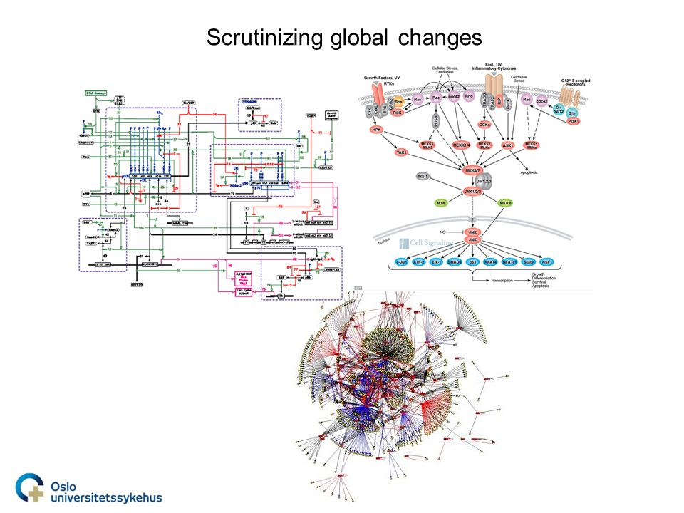Scrutinizing global changes