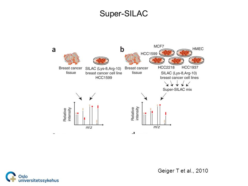 Super-SILAC Geiger T et al., 2010