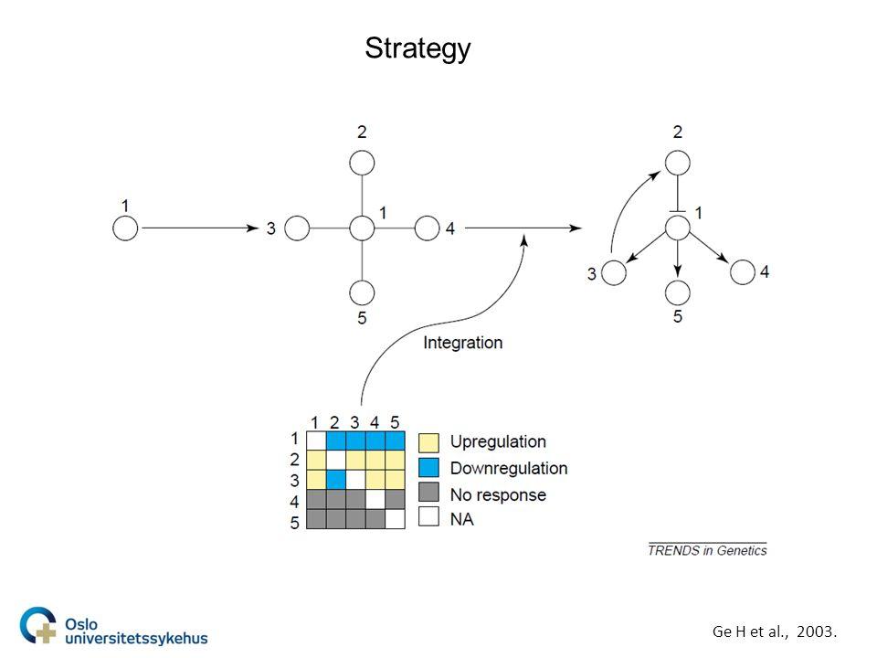 Strategy Ge H et al., 2003.