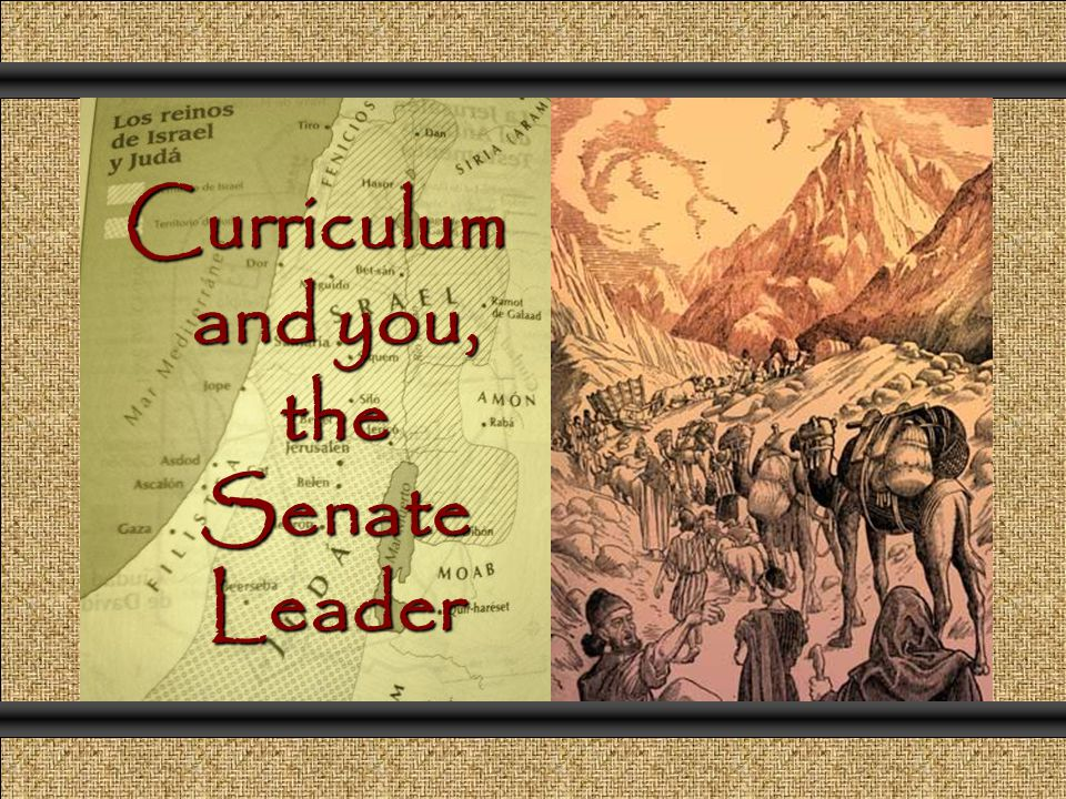 Curriculum and you, the Senate Leader