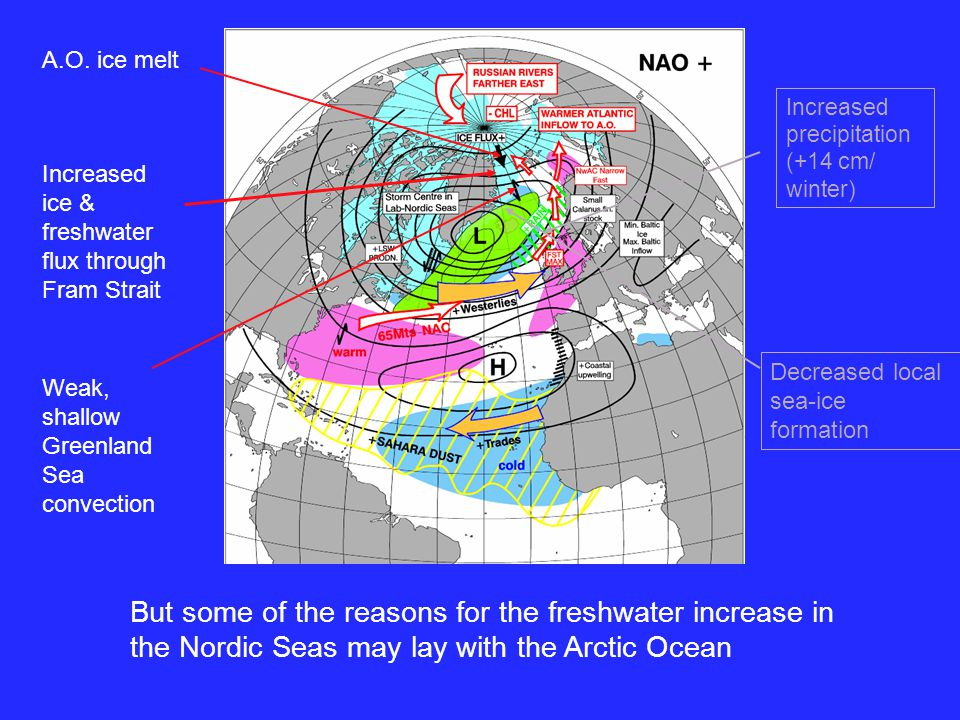 variety of reasons Weak, shallow Greenland Sea convection But some of the reasons for the freshwater increase in the Nordic Seas may lay with the Arctic Ocean A.O.