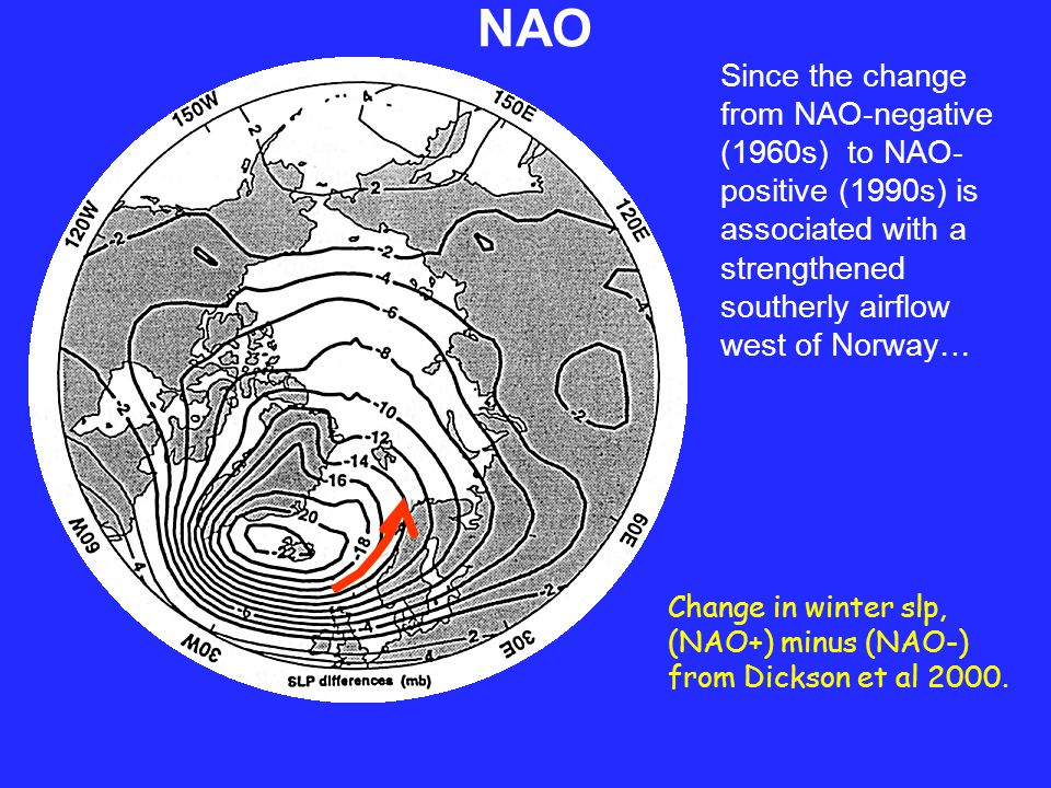 ….it is unsurprising that the amplifying NAO was accompanied by a warming of the 2 main Atlantic water inflows to the Arctic Ocean - -- in this case the upper 500m of the WSC west of Svalbard.
