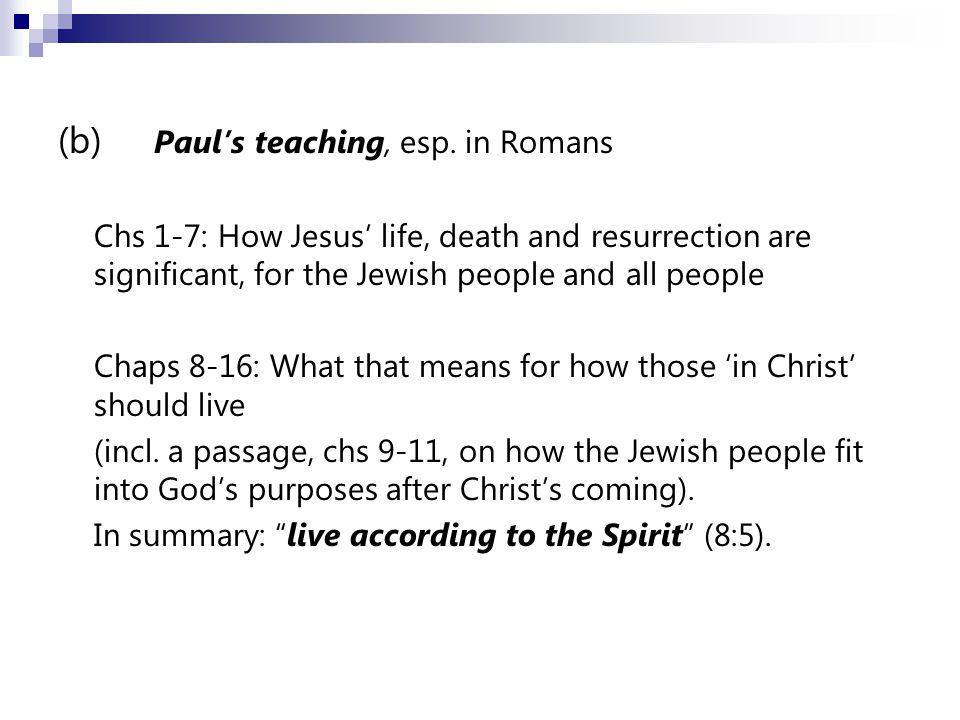 (b) Paul's teaching, esp.