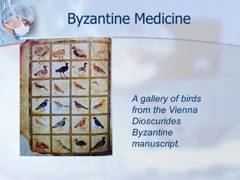 Byzantine Medicine A gallery of birds from the Vienna Dioscurides Byzantine manuscript.