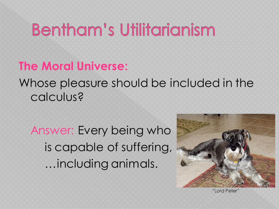 "The Moral Universe: Whose pleasure should be included in the calculus? Answer: Every being who is capable of suffering, …including animals. ""Lord Pete"