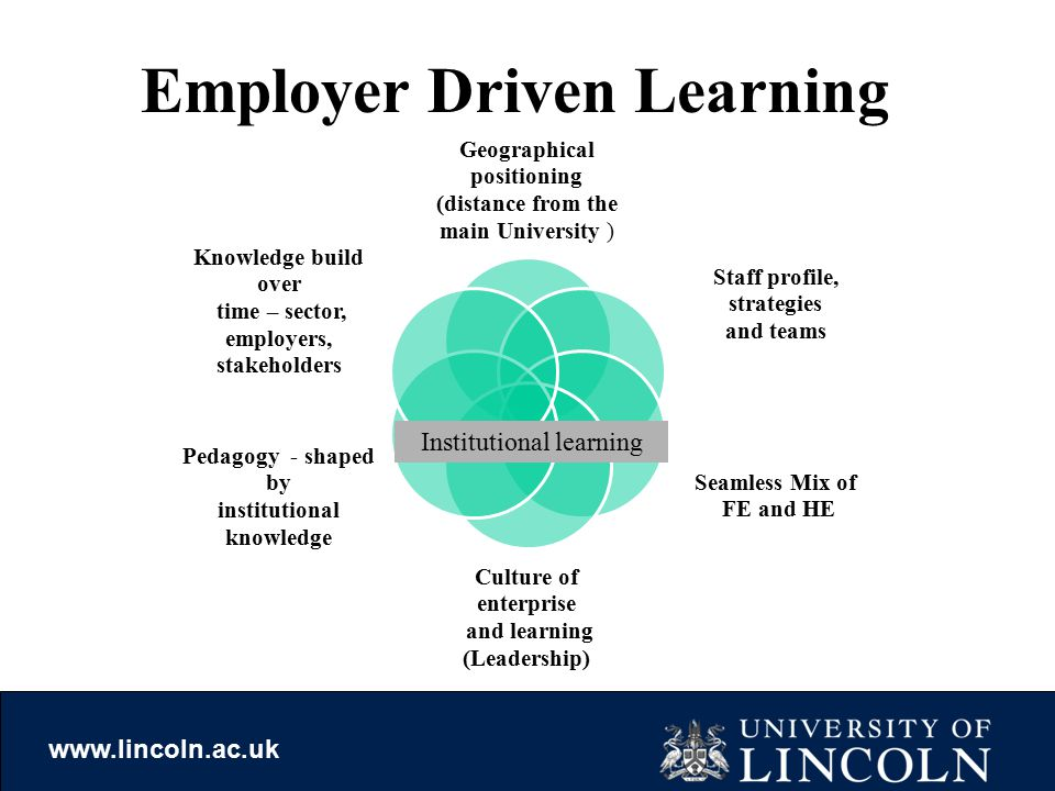 www.lincoln.ac.uk Geographical positioning (distance from the main University ) Staff profile, strategies and teams Seamless Mix of FE and HE Culture of enterprise and learning (Leadership) Pedagogy - shaped by institutional knowledge Knowledge build over time – sector, employers, stakeholders Institutional learning Employer Driven Learning