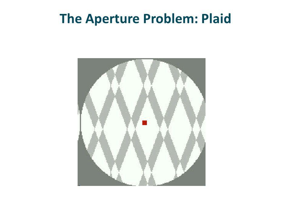 The Aperture Problem: Plaid