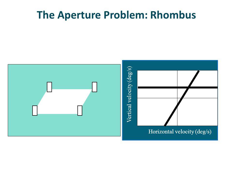 The Aperture Problem: Rhombus Horizontal velocity (deg/s) Vertical velocity (deg/s)