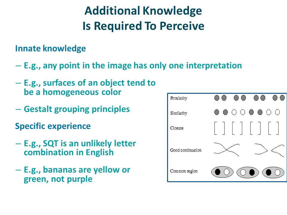 Additional Knowledge Is Required To Perceive Innate knowledge – E.g., any point in the image has only one interpretation – E.g., surfaces of an object tend to be a homogeneous color – Gestalt grouping principles Specific experience – E.g., SQT is an unlikely letter combination in English – E.g., bananas are yellow or green, not purple