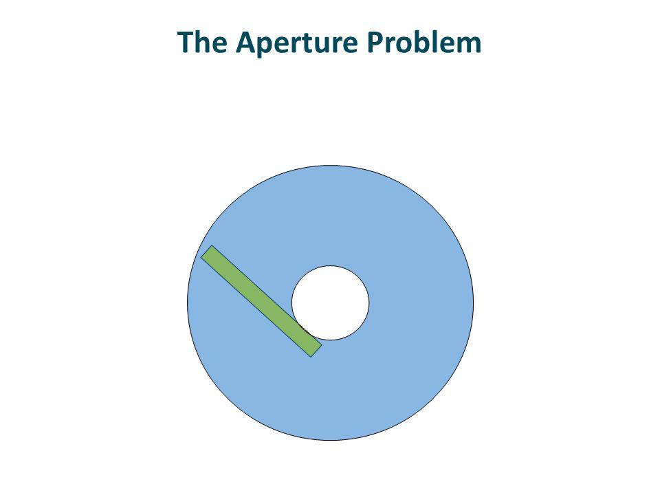 Rhombus Thickness Influences Perception