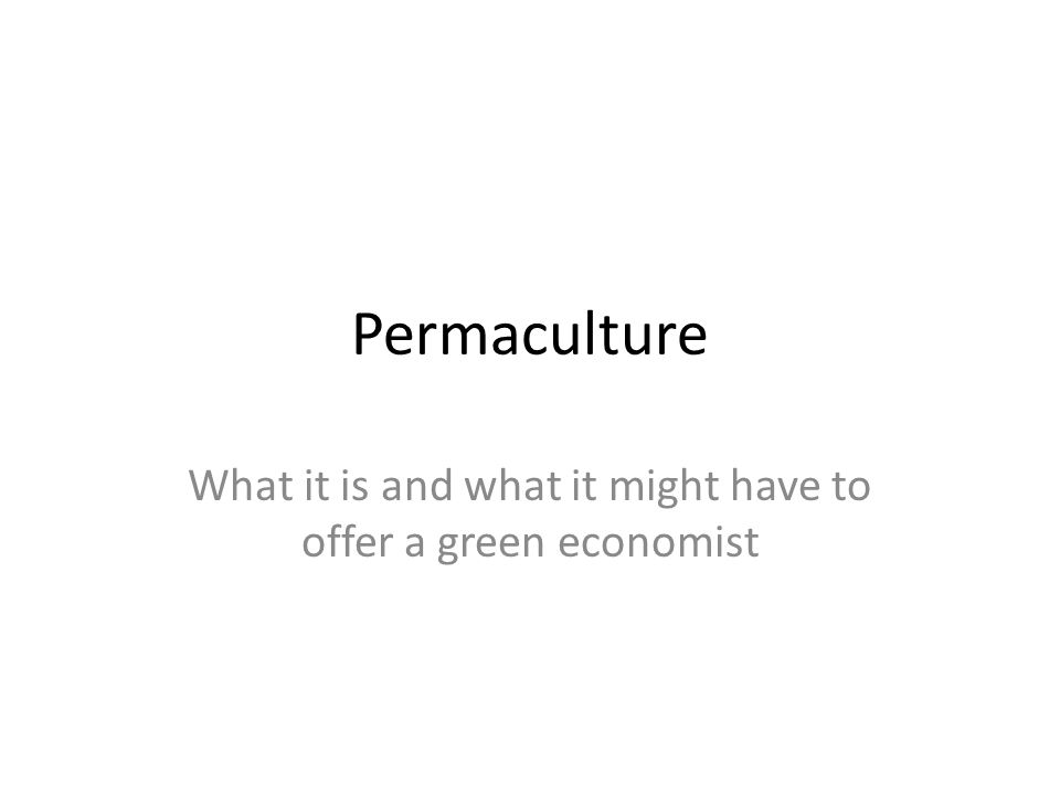 Permaculture What it is and what it might have to offer a green economist