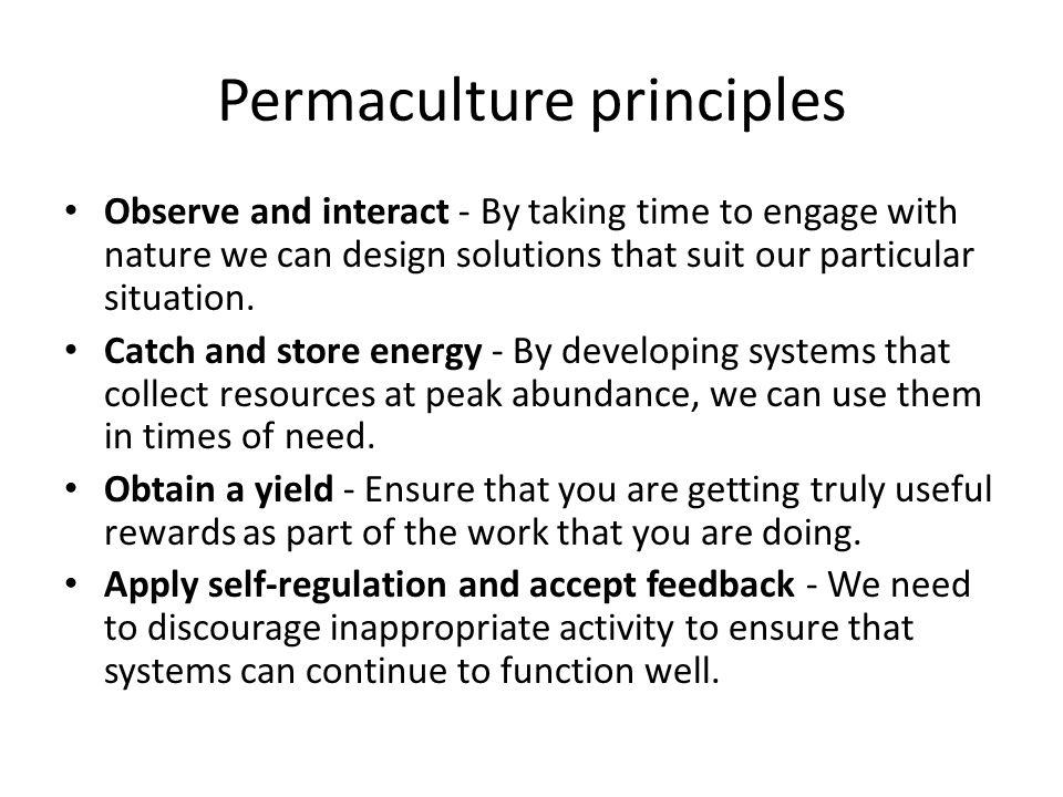 Permaculture principles Observe and interact - By taking time to engage with nature we can design solutions that suit our particular situation.