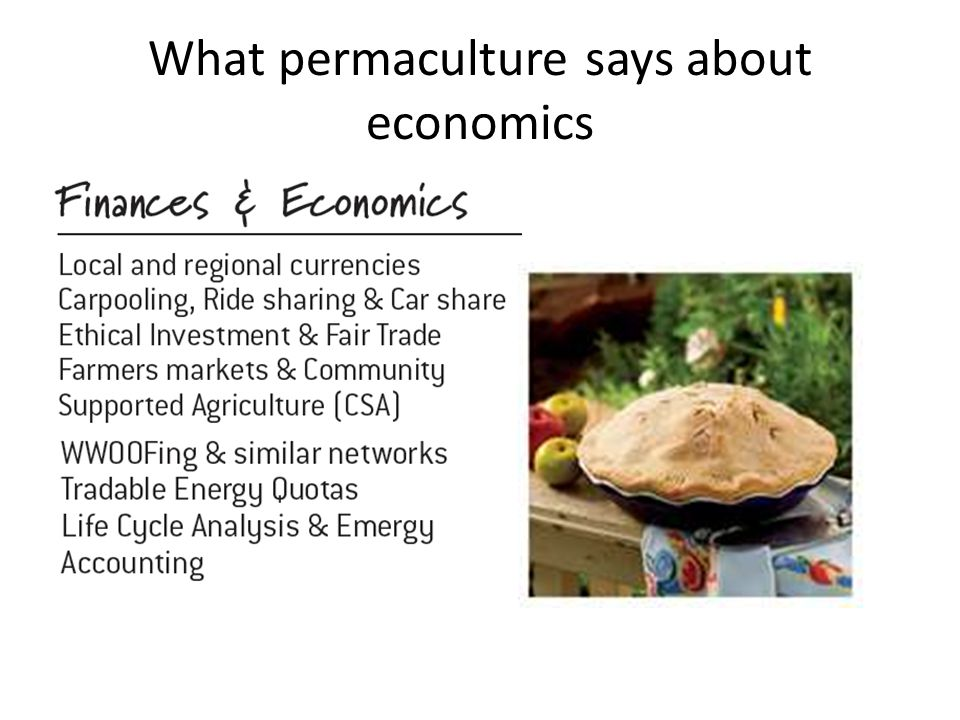 What permaculture says about economics