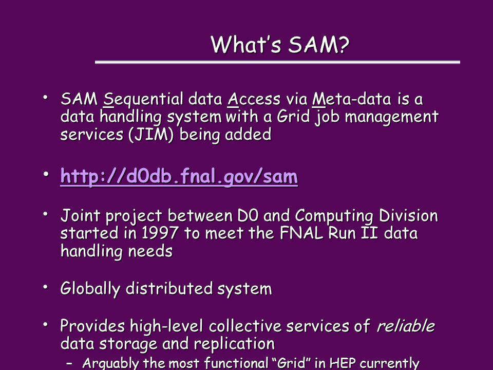 What's SAM.