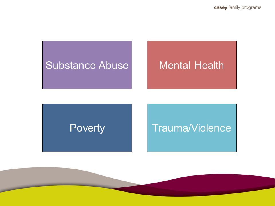 Substance Abuse Trauma/ViolencePoverty Mental Health