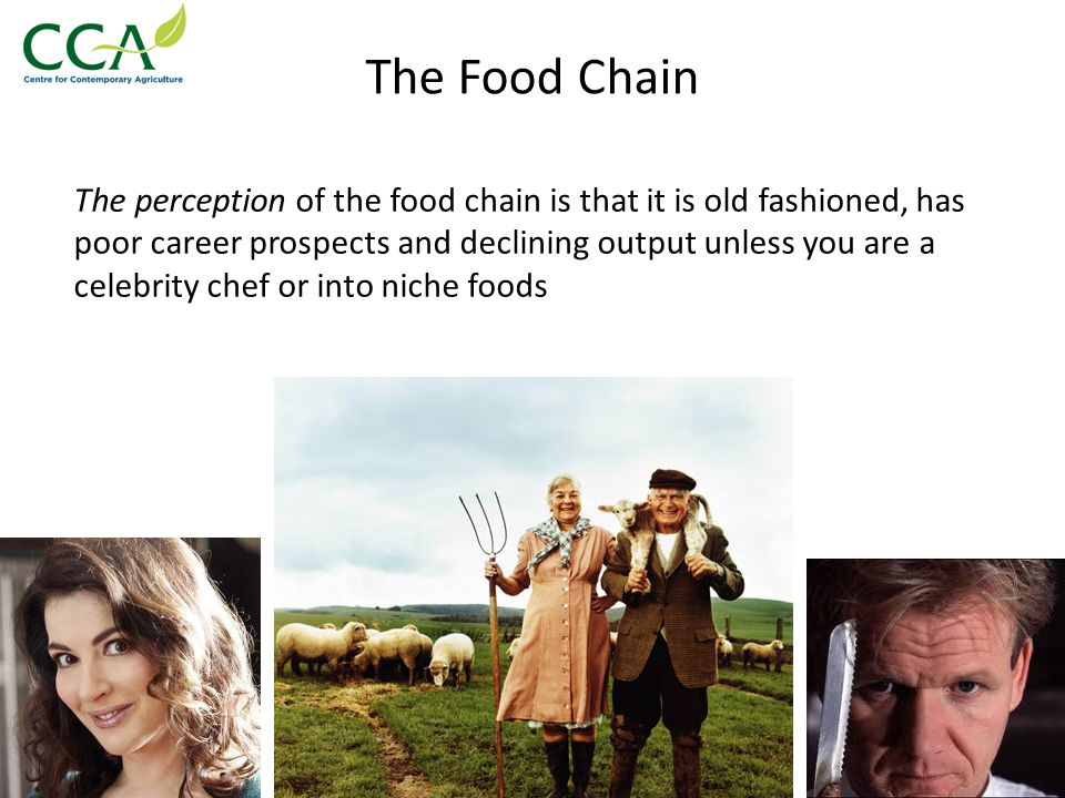 The Food Chain Truth is, the food sector: Has been growing its GVA, exports and sales even during the recession Share of economy has grown: 6.5% in ('07) to 7.0% ('11) Is high tech Has excellent job prospects Most of the sector is still focused on selling food via big retailers to the public